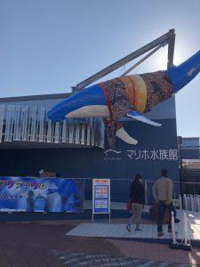 マリホ水族館へ行って来ました☆
