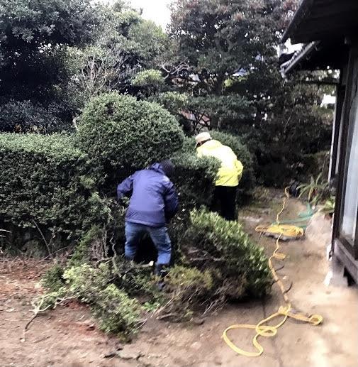 【エクステリア工事】植栽撤去工事